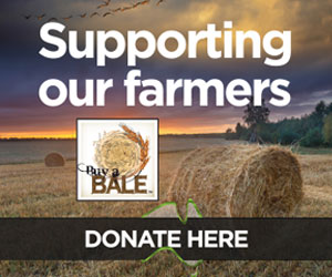 Buy A Bale - Supporting Australian Farmers through the drought